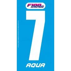 F100 Aqua 2019